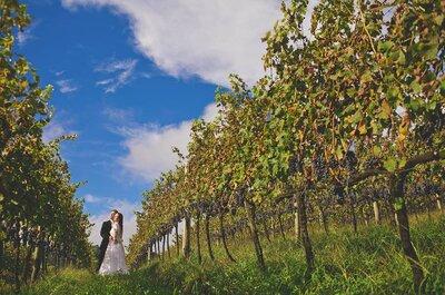 Casamento numa vinícola: conheça as mais incríveis do Brasil e tenha uma festa de conto de fadas!