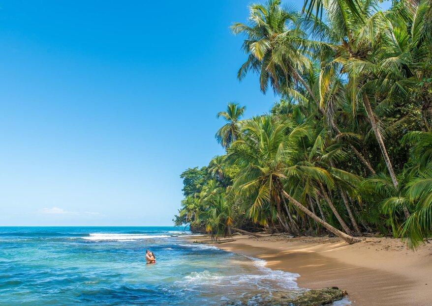 Siente la 'pura vida' de Costa Rica con TUI y sus maravillosas oportunidades