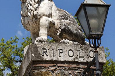 Ваша свадьба на сказочной территории Tenuta di Ripolo!