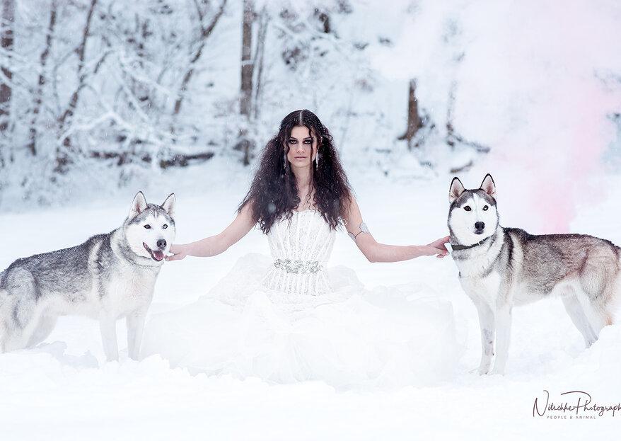 Hochzeit im Schnee – Traumhafte Bilder mit Huskys!