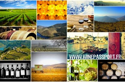 Wine weekends and vineyard honeymoons with Wine Passport!