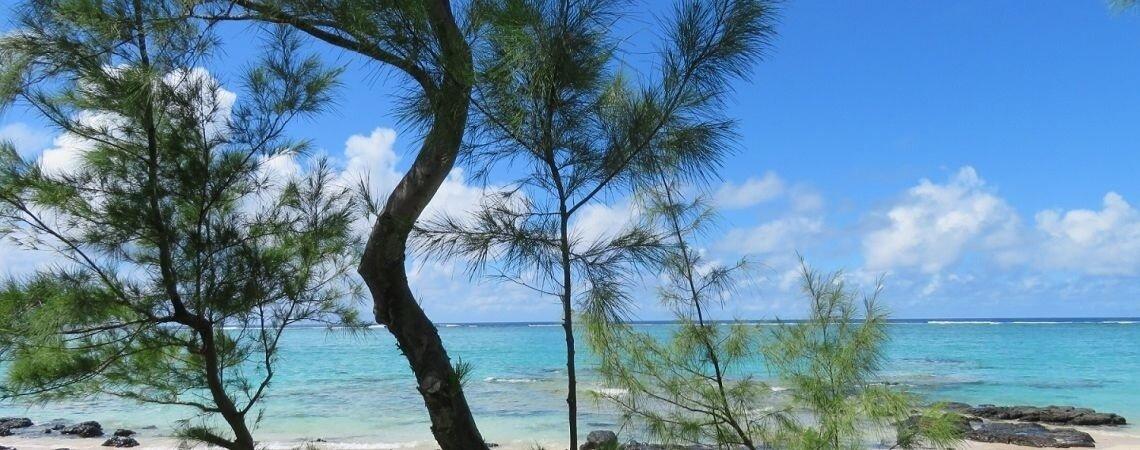 Lune de miel à Rodrigues : Laissez Echappée Australe vous créer un séjour sur mesure sur cette île de l'océan indien