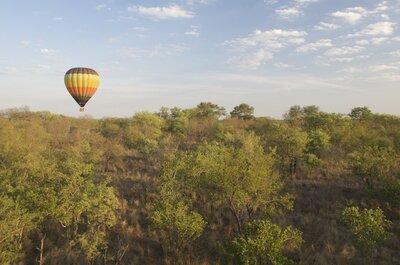 Dessinez-moi une lune de miel : De l'Afrique du Sud aux Seychelles