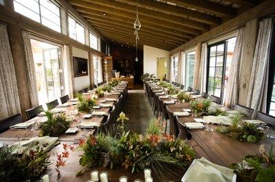 Lebende Pflanzen als Hochzeitsdekoration 2013 – wunderschön und lebendig!