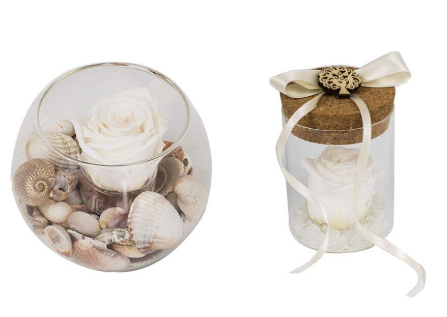 Bomboniere con Rose Stabilizzate Aluisi, uno splendido e raffinato ricordo del vostro amore per i vostri invitati