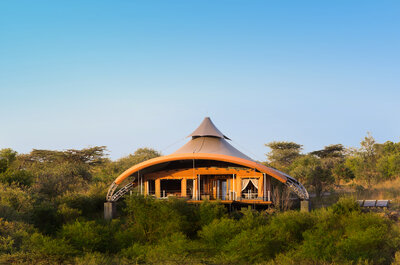 The Ultimate Safari Experience! Choose Mahali Mzuri for your Honeymoon in Kenya!