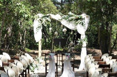 Vignobles, oliviers et chant des cigales pour votre mariage au Domaine de La Grangette