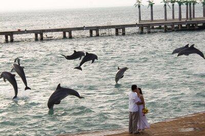 Tu boda en el paraíso: La mejor forma de decir ¡sí quiero!