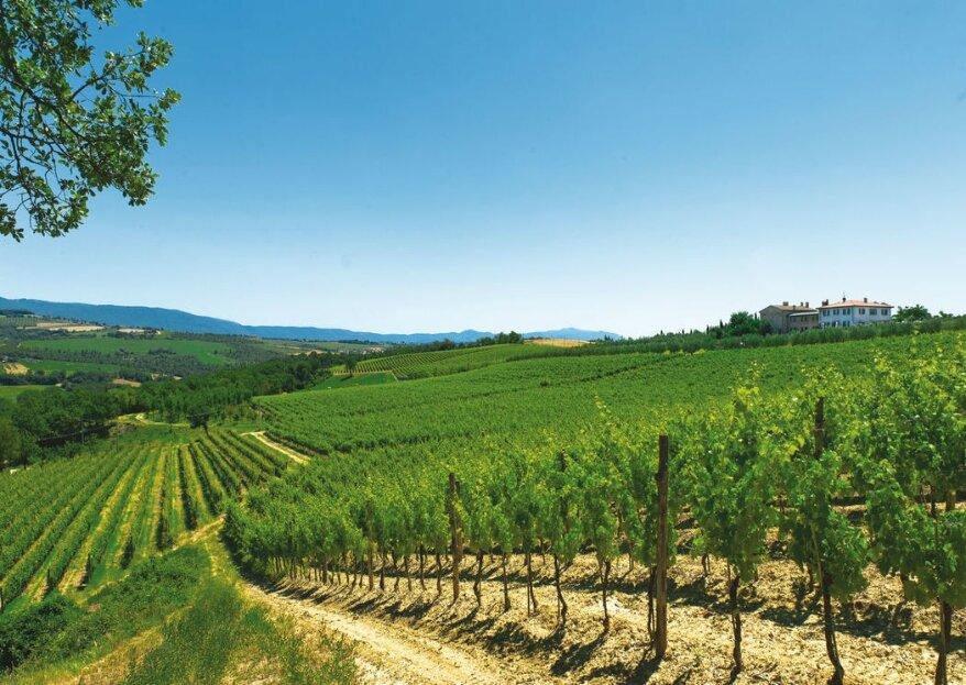 Roccafiore Wine Resort & Spa, immerso tra le vigne e gli uliveti umbri, un perfetto mix tra natura ed eleganza