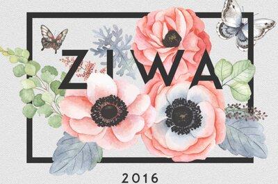 Die Abstimmung für die ZIWA 2016 wird verlängert! Wer wird der Favorit sein?