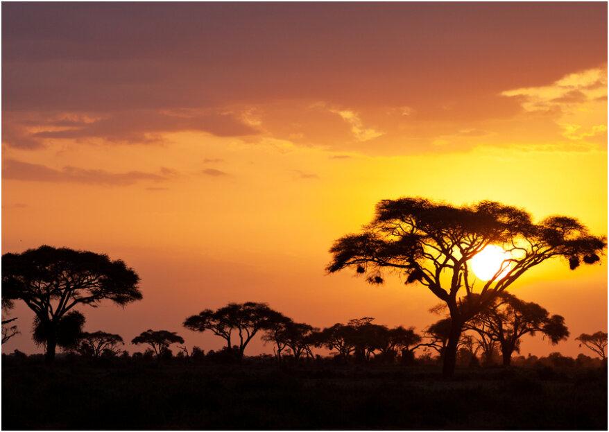 Luna de miel impresionante en Kenia: conoce la joya de África