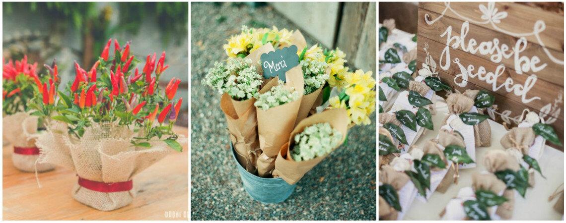 Regala flores y plantitas en tu boda: ¿sabes cuál, a quién y cómo?