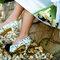 Sapatos com estampas coloridos também têm feito sucesso. Foto: via blog greenkarat.com