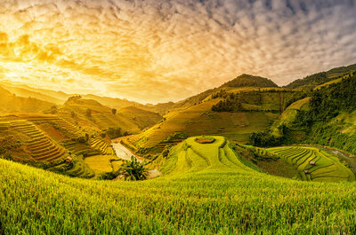 Vietnam, un paraíso milenario para disfrutar tu luna de miel