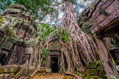 Vive una luna de miel diferente y exótica en Siem Reap, Camboya