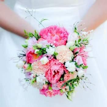 Credits- O sens des fleurs