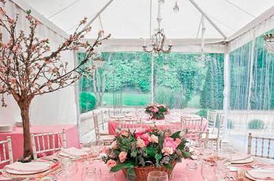 Montaje de mesa rosa con árboles. Foto: Granplann
