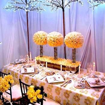 ¿Elegirías esta decoración para tu boda?