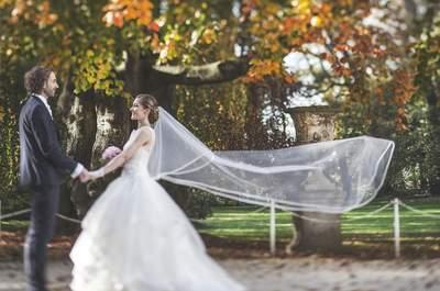 Le mariage de Cécile et Rémi : un gâteau renversant et une robe qui s'illumine !