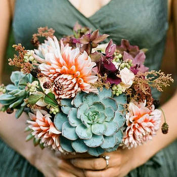 Il trend del 2012? Un bouquet di piante grasse
