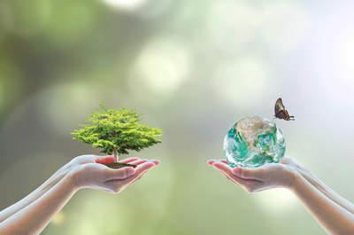 ¿Cómo sentirte hermosa y al mismo tiempo responsable con el medio ambiente?