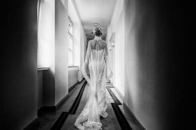 Die Top 12 Hochzeitsfotografen aus Frankfurt und Umgebung! So schön lässt es sich mit Licht malen