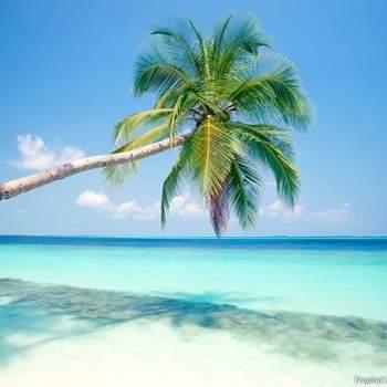 Playa Del Carmen, Mexico Via: Pinterest
