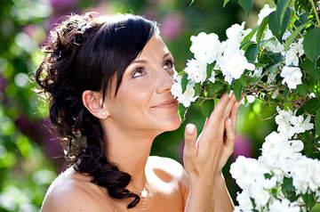Steinecker Brautmode Graz Brautgeschafte Besuchen