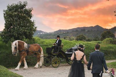Foto: D Zuleta Wedding Photographer