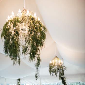 Lámparas de araña con hiedra. Decoración de floristería Chitina`` Credits: Kiwo