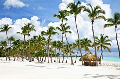 Lua de Mel em Punta Cana: cenário de filme em um resort romântico 5 estrelas