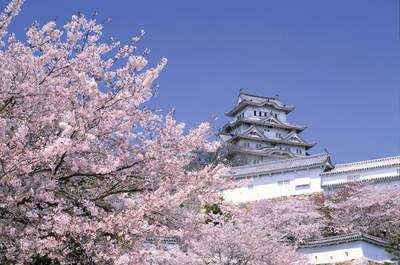 Luna de miel en Japón: belleza, tradición y arte