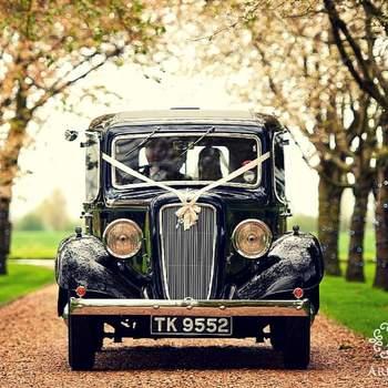 Arecas... El jardín perfecto para tu boda