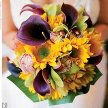 I due colori complementari per eccellenza: giallo e viola