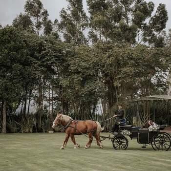 Foto: Hacienda Pozo Chico