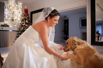 Perros en bodas: cásate acompañada de tu amigo más fiel