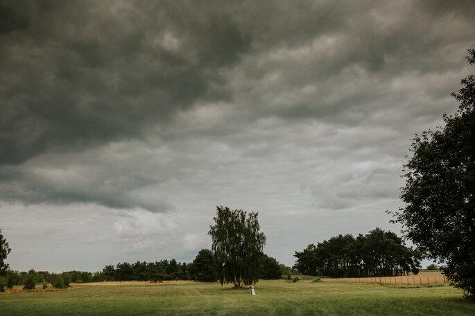 Fotografia Mateusz Siedlecki