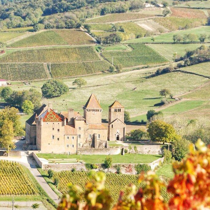 Des feuilles d'automne avec un château historique en toile de fond