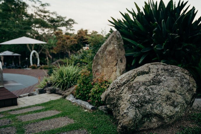 Natureza na Quinta da Devesa