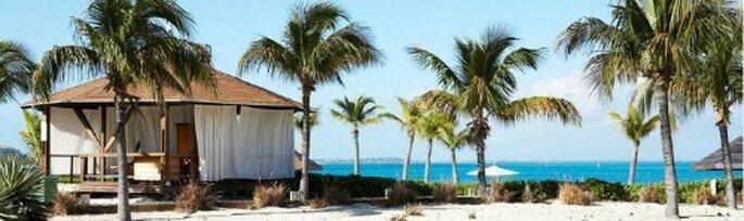 Caraibi da sogno con Club Med. Foto: Club Med