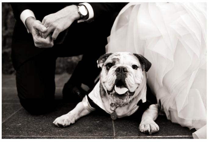 ¿Por qué las fotos de boda en blanco y negro son las más bonitas? - Foto Focus Photography