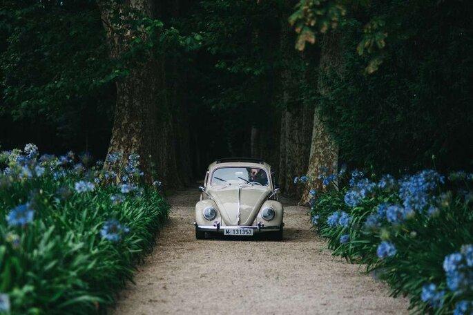 Как выбрать транспорт для гостей свадьбы: 5 шагов