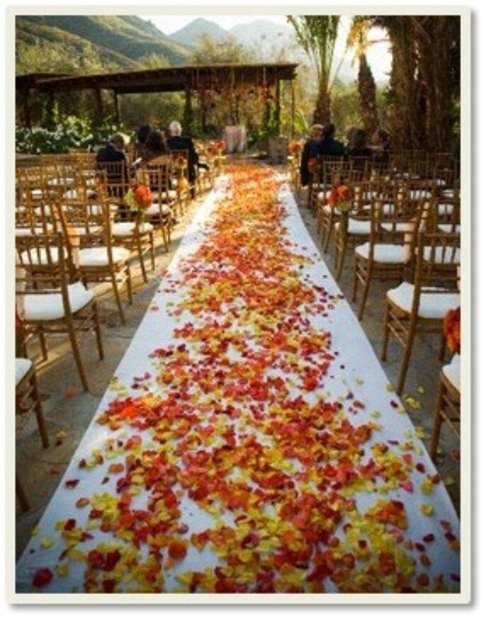 Los pétalos se encargan de crear una atmósfera de romanticismo  encantadora