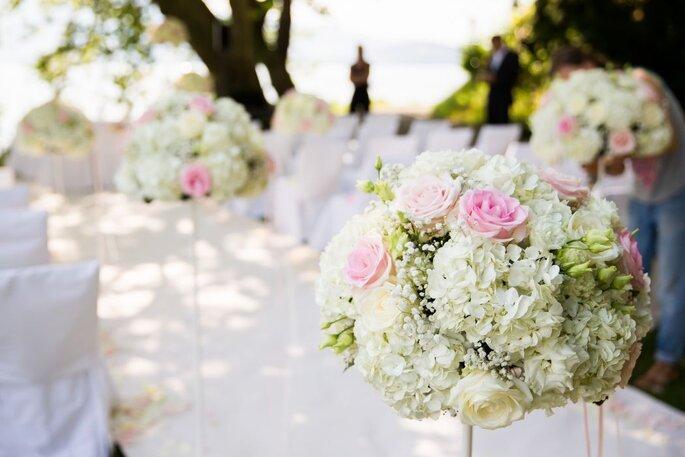 Tinamara Blumen & Dekorationen