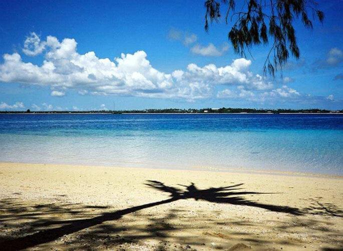 Una de las tantas paradisíacas playas de Nueva Zelandia
