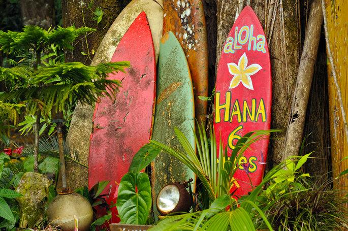 Hawaii - Foto: Mike Brake / Shutterstock.com