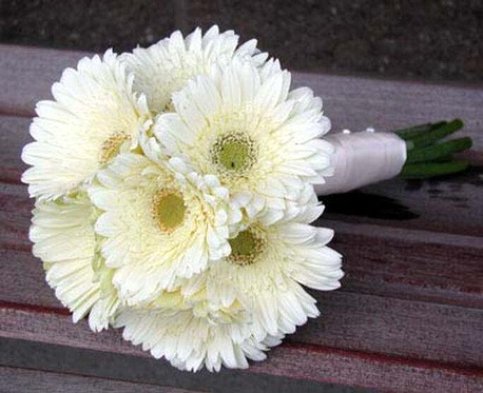 Sencillo y delicado ramo de margaritas blancas
