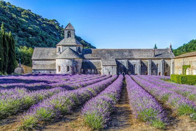 Abbaye de Sénanque - WikiCommons