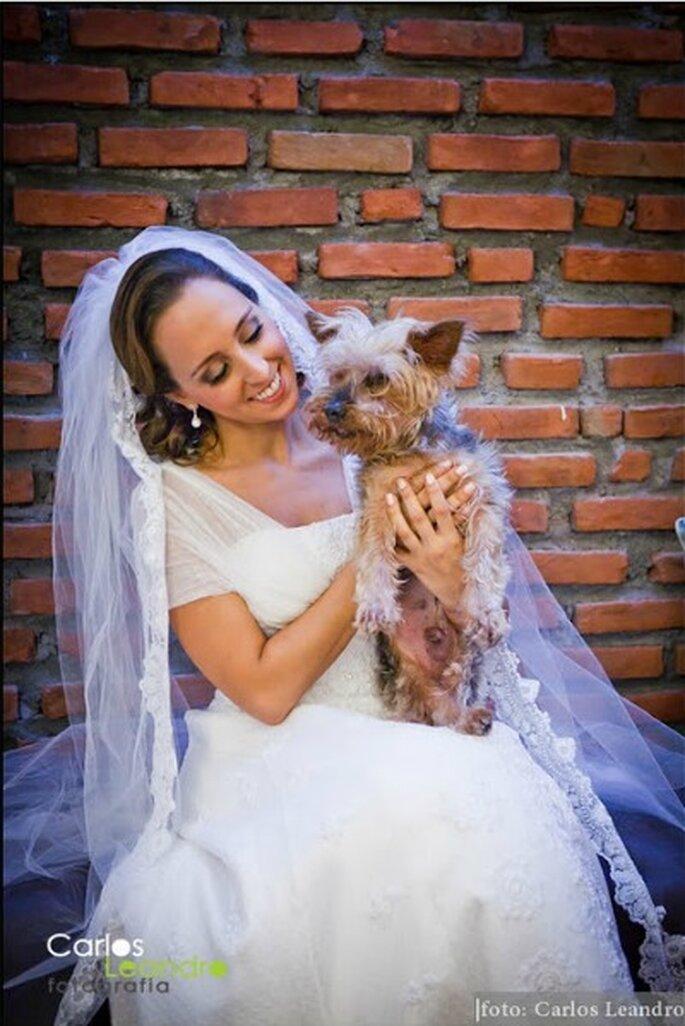 Algunas de las mejores imágenes con mascotas son tomadas en las sesiones preboda por fotógrafos profesionales. Foto: Carlos Leandro