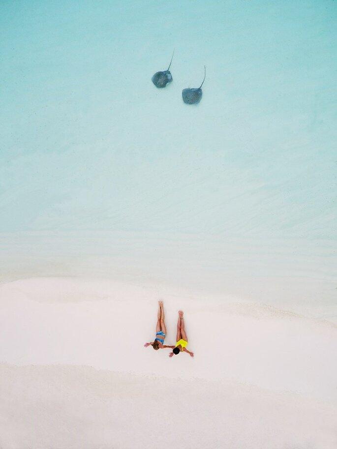 Printemps Voyages